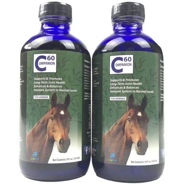 Companion60 Carbon 60 for horses